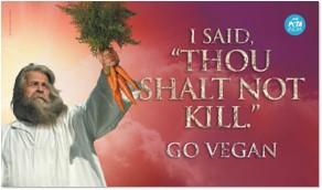Go Vegan - Easter's Peta