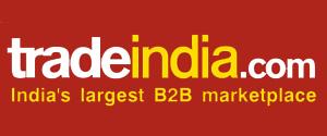 Advertising in Tradeindia, Website
