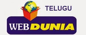 Advertising in WebDuniya Telugu, Website