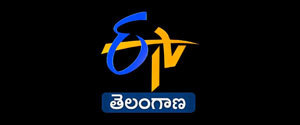 Advertising in ETV Telangana