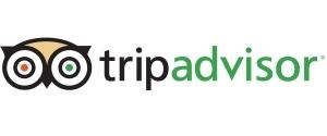 Advertising in Tripadvisor, Website
