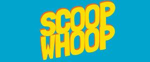 Advertising in ScoopWhoop, Website