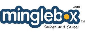 Advertising in Minglebox, Website