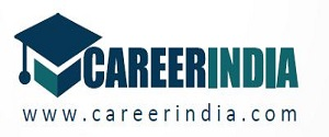 Advertising in CareerIndia, Website